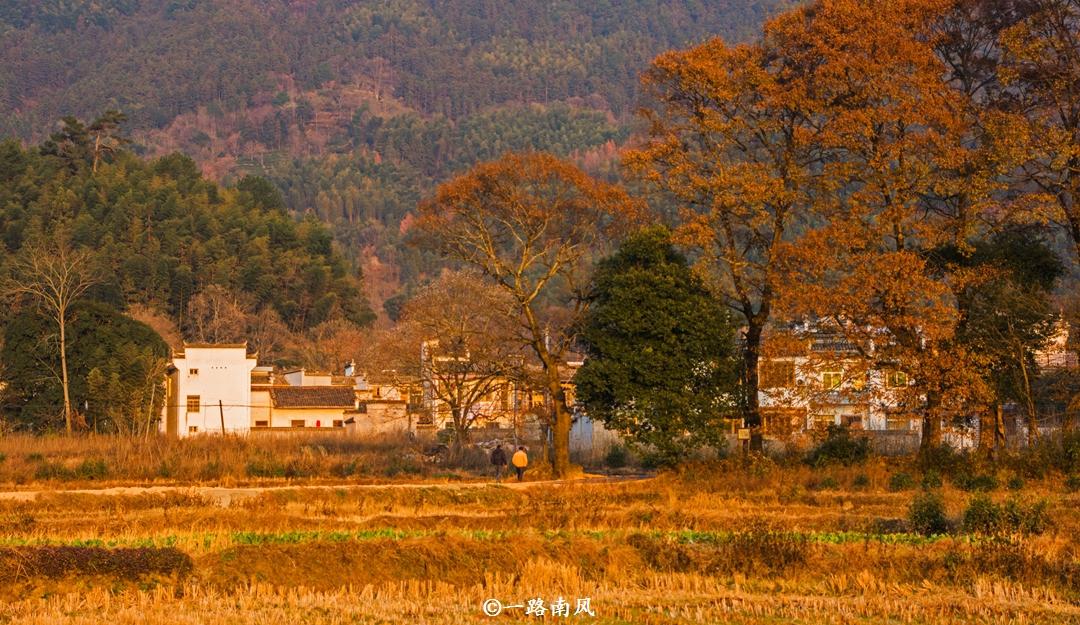黄山有座迷人村落,比宏村更古朴,一到深秋就成摄影天堂!