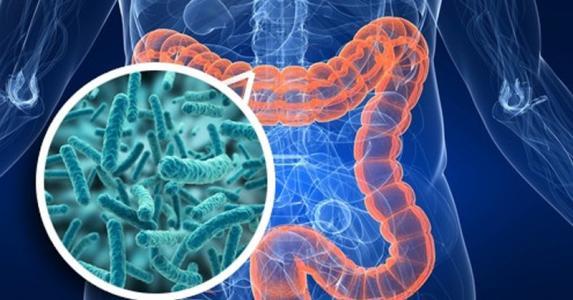 搜狐科学 | 专家发现粪便或可医治抑郁症:粪菌移植是否能治百病?