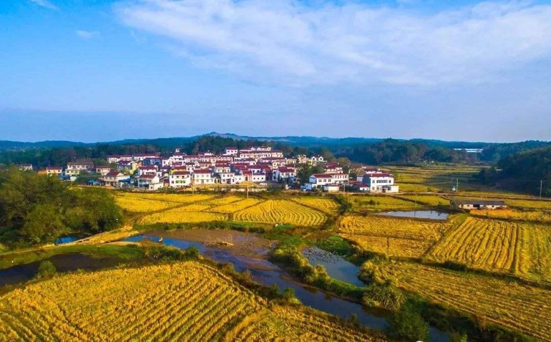 农村农业产业化_安徽10个农村最穷的县,你的家乡上榜了吗?_收入