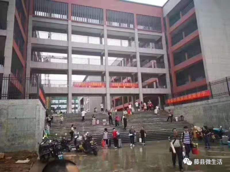 新的入学季,藤县教育集中区马上就热闹起来了