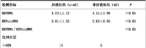 深入看懂乙肝两对半,通过转氨酶异常,认识状态是否稳定