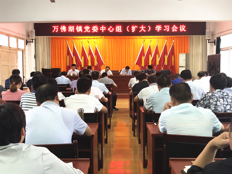 万佛湖镇召开党委中心组(扩大)学习会议