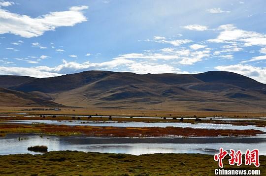 """青海""""三步走""""建设国家公园示范省"""