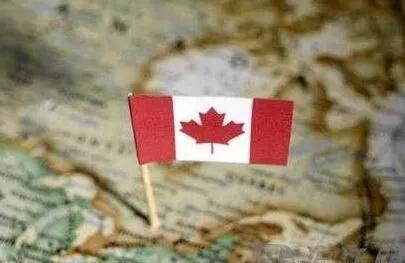 加拿大本科留学,超一半学生选择医博类大学!