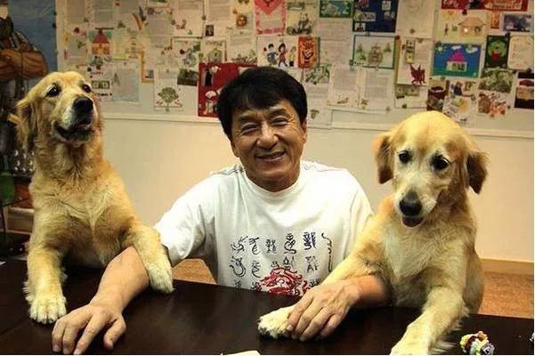 <b>成龙:就算出一个亿,也休想带走我的狗!</b>