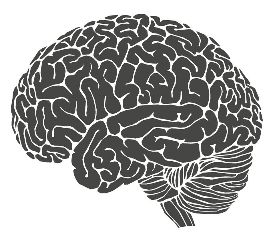 脑 机接口 已有实现的可能,人脑与电脑互通,新时代悄然而至