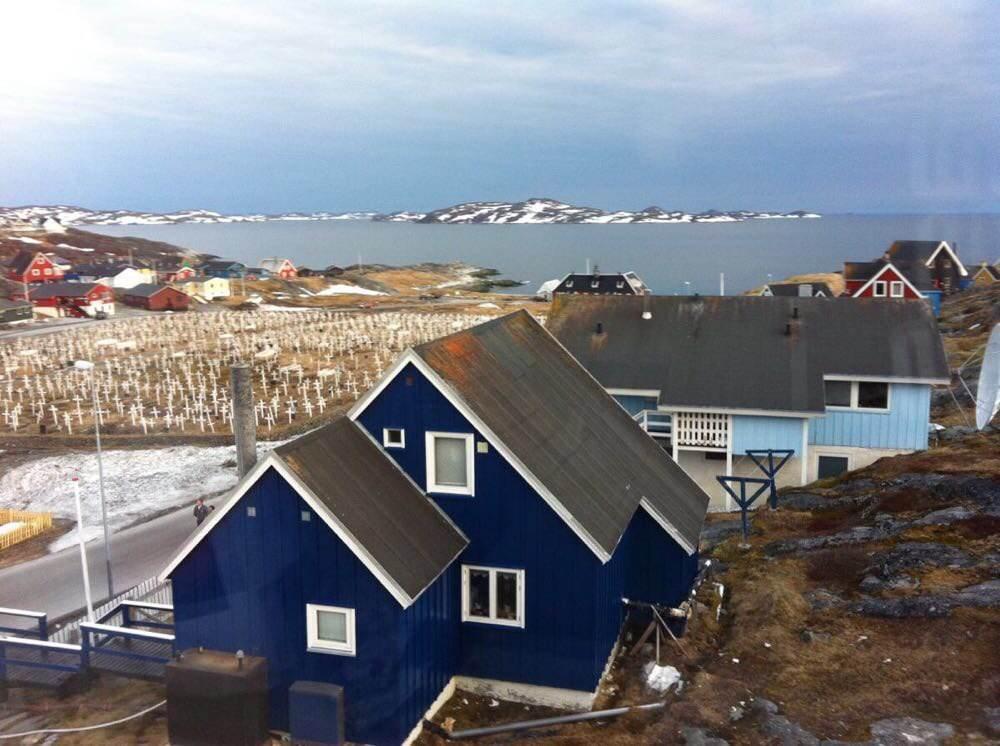 格陵兰 gdp_格陵兰鲨