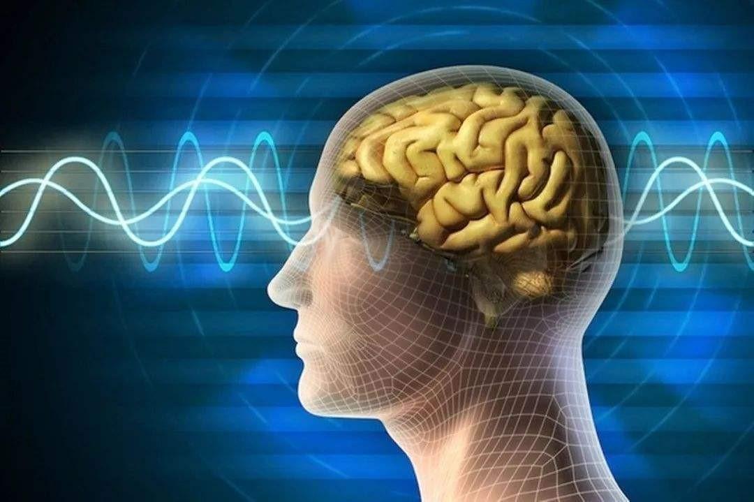狐狸实验室 | 协和马文斌:脑胶质瘤为什么那么难治?