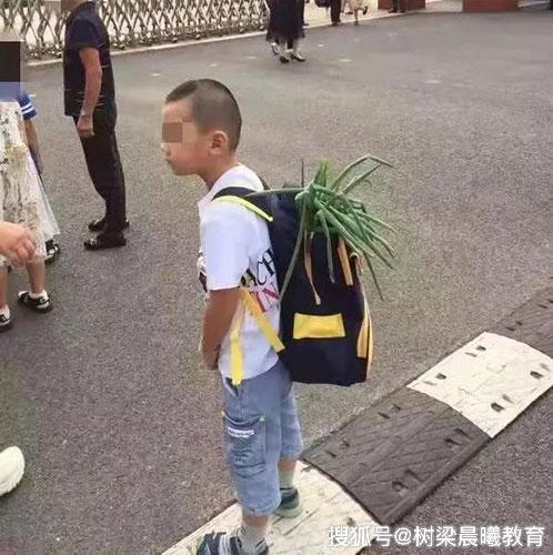 小学生背着葱上学乐坏网友:你要考不上清华都对不起葱