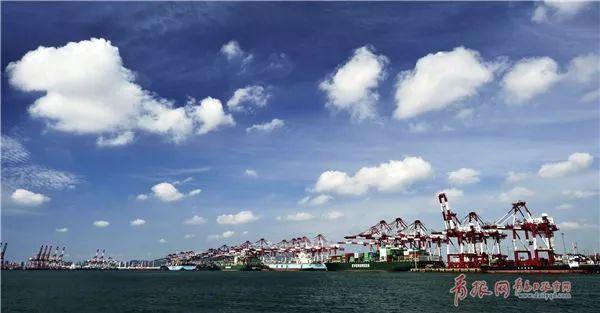 青岛港总体规划公示 这六大港区未来了不得