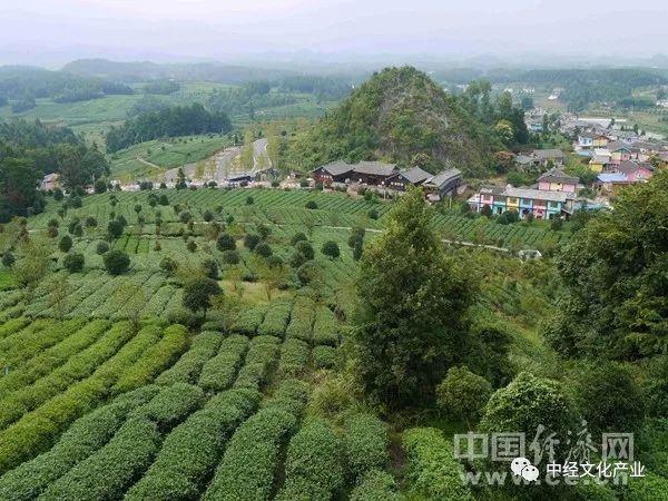 这样的美丽休闲乡村,农业农村部门将大力推荐!