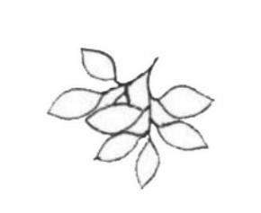 如何利用花草树木来营造绘画场景 让绘伴来教你场景技巧
