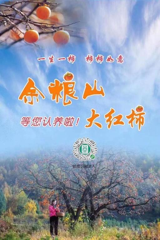 """浙江首个全网可视化文娱生态农业落地,让循环认养更""""智慧"""""""