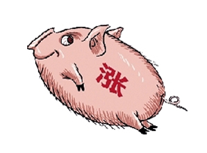 猪肉价格持续上涨,这么个涨法,你还吃得起猪肉吗?