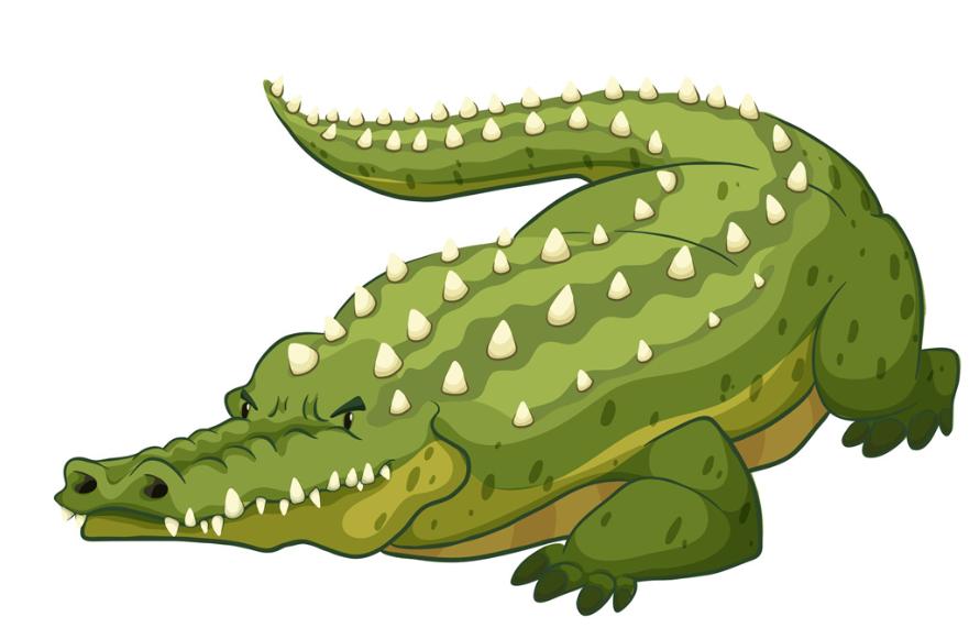 橡皮泥鳄鱼手工制作图片