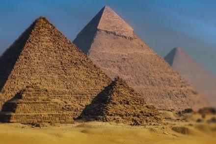 又要砍价又要增肥,我在埃及到底经历了什么