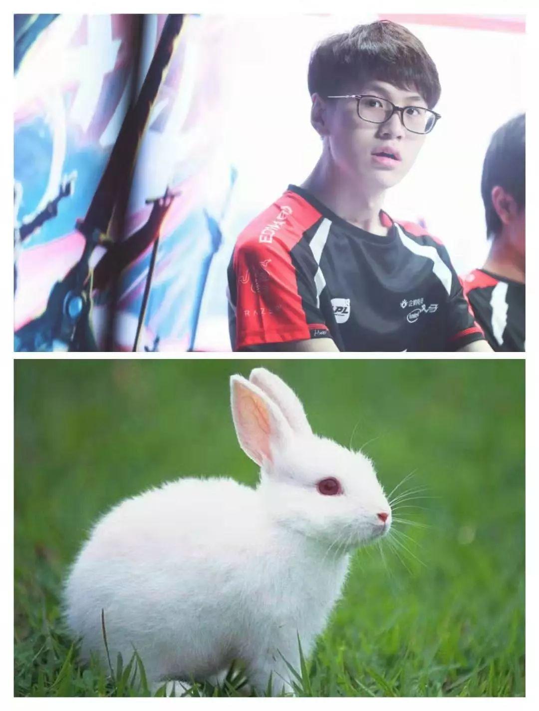 流氓兔经典图片头像