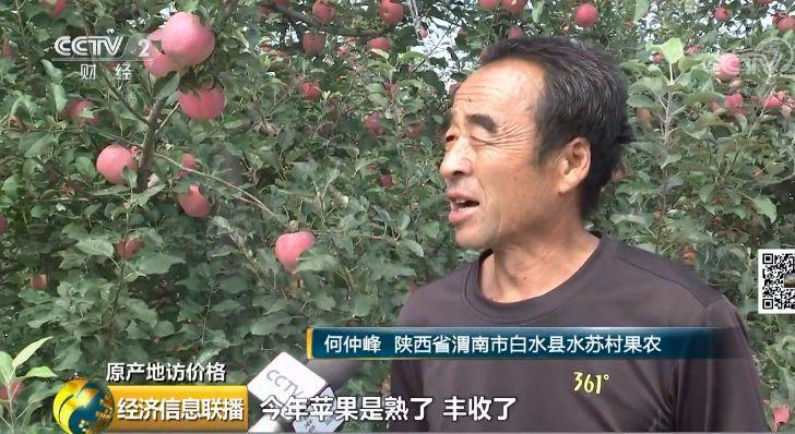 <b>央视财经记者来到白水县最大的一家苹果经销企业</b>