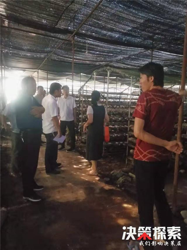 西峡县丁河镇:小额信贷推动贫困户脱贫致富