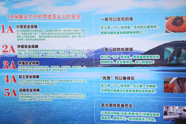 5A东江湖纯净鱼游进广佛,游向全国!