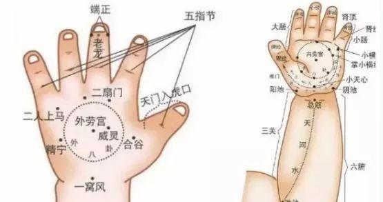 二穴极品美女3p图_操作手法:以两手食,中指固定患儿腕部,同时以拇指掐小儿精宁,威灵二穴