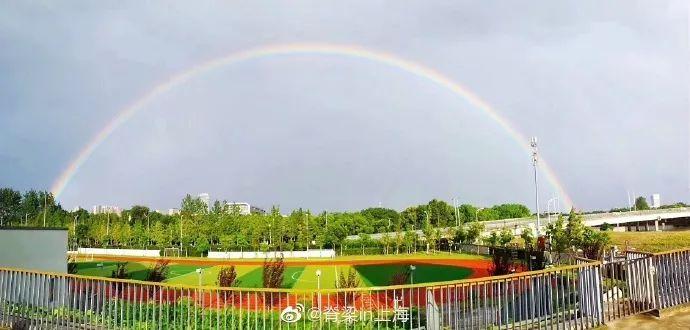 上海首届青年爱情节!看完,我又相信爱情了...