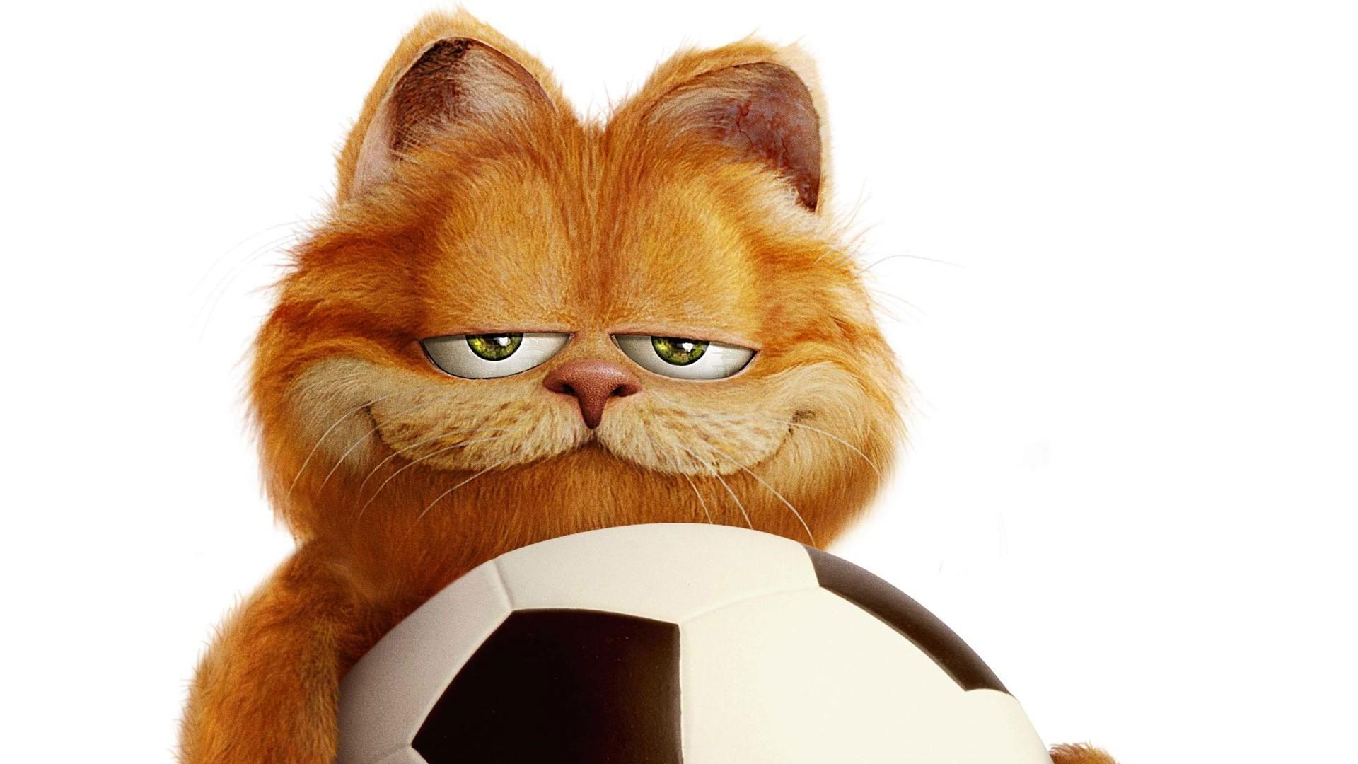 九部高分猫咪电影,不喜欢吸猫的编剧不好导演