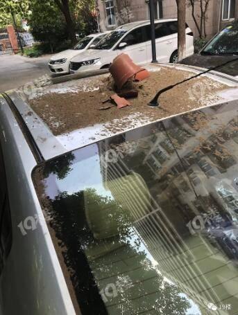 杭州某小區樓下停車連著兩年被砸!律師:可以起訴所有住戶!