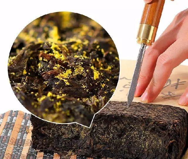 黑茶四宝:冠突散囊菌、硒元素、锗元素、茶多糖