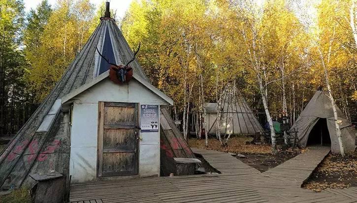 2019鄂温克族驯鹿部落游玩攻略,走进中国最后的驯鹿部落