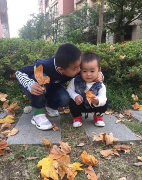 如何相处 两宝温馨有爱的相处模式,只因给了大宝足够的关爱和肯定