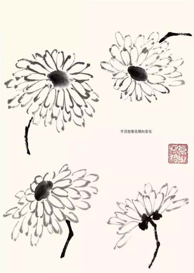 写意国画   菊花画法,清晰明了!