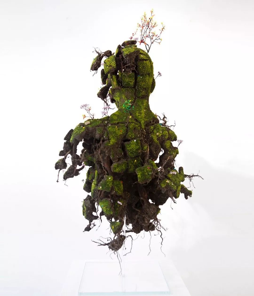 这些超现实的植物雕塑看起来像是你的花园活了过来