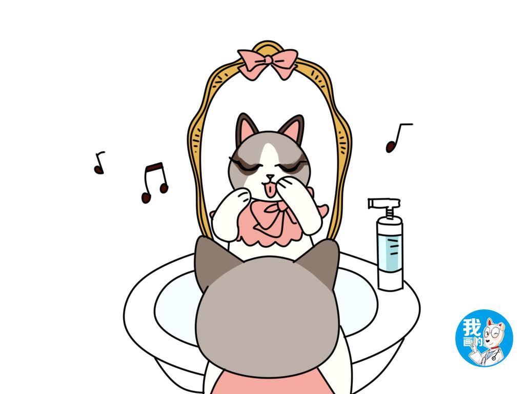 布偶猫不吃饭图片