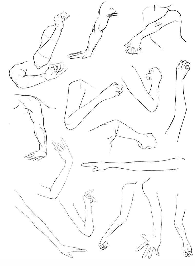 漫画绘画教程之漫画人物手臂的画法