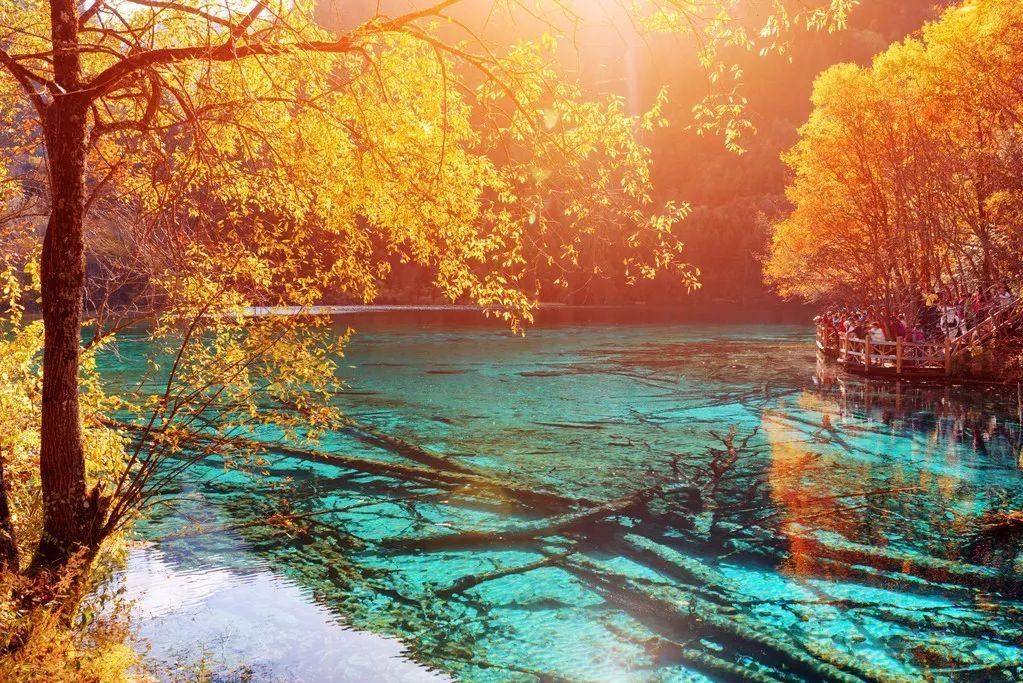 秋日旅行中最美的15個瞬間,你經歷過幾個?