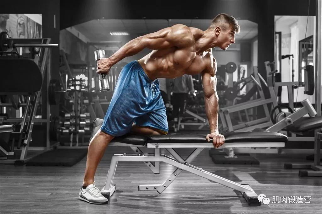 胸部练习的4个王牌动作,塑造完美胸型,展现专属男人本色