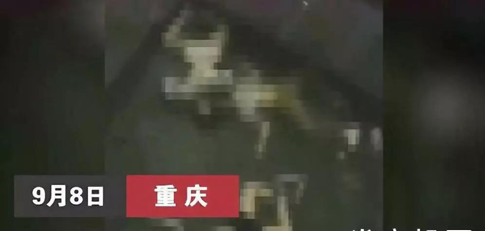 3名初中女生携手从18楼跳下身亡:孩子你放下所有,也不该放弃生命!