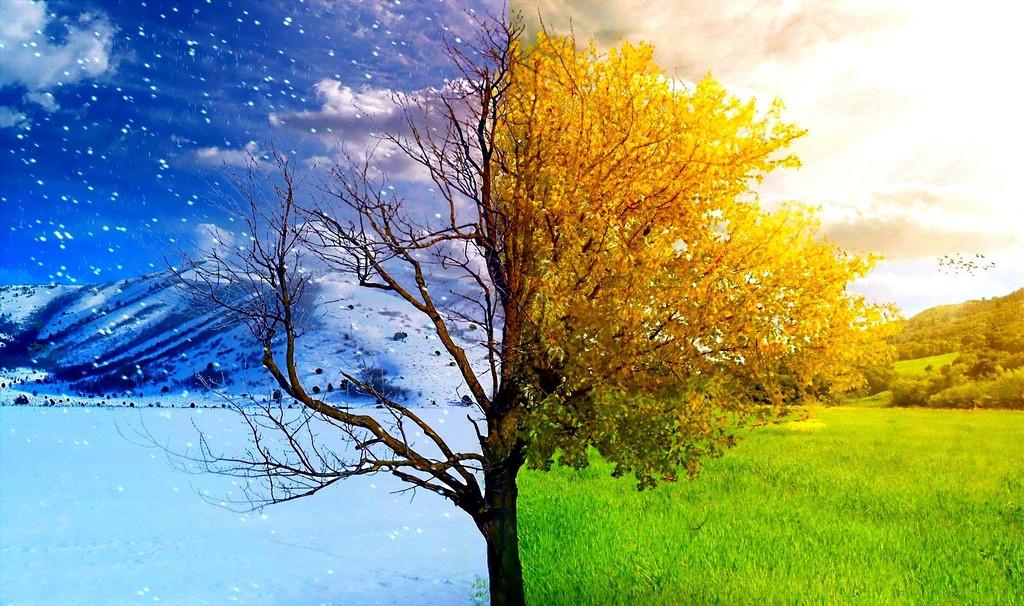 秋冬季护肤小常识,赶紧进来了解一下,一年四季都能拥有好肌肤!