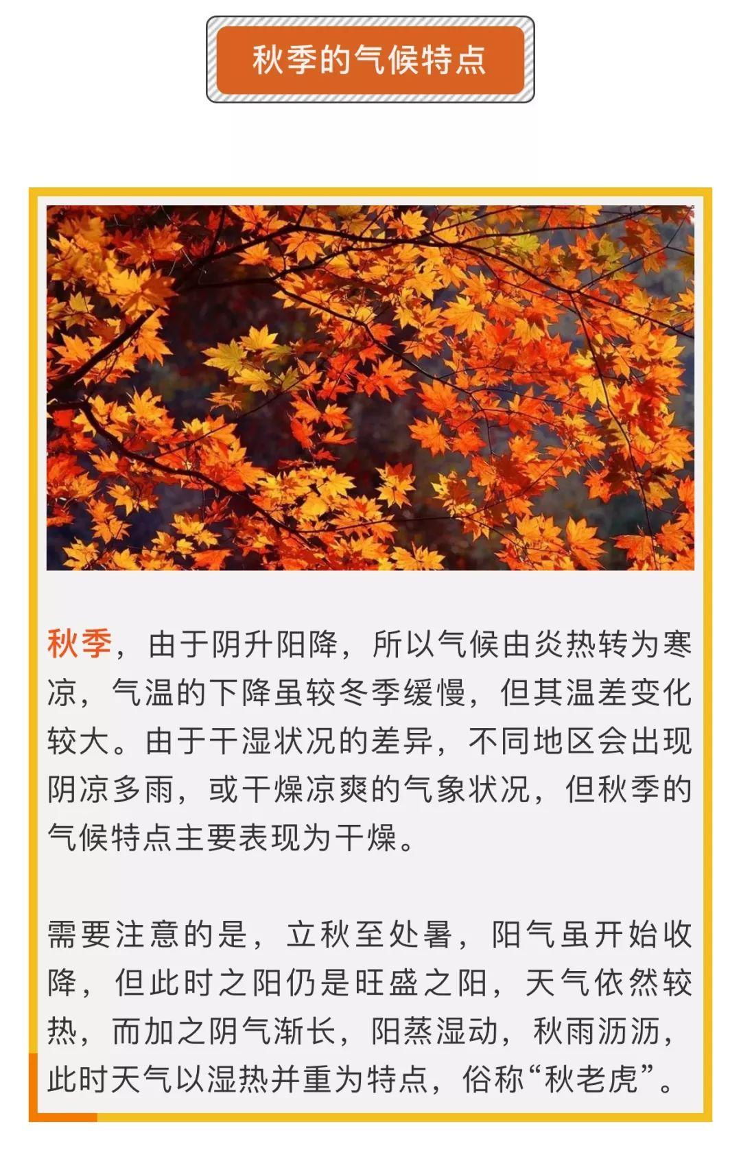 健康 | 吃出健康,秋季养生正当时!