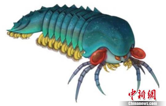 古生物学家发现目前已知最古老螯肢类节肢动物
