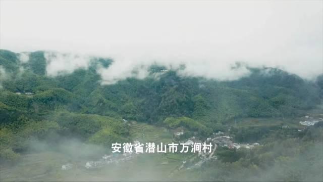闽侯青口人口过万的村有哪些_闽侯青口镇西台村(3)