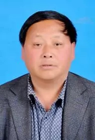 阜阳市人大代表王振青涉黑被刑事拘留,曾获评全国劳模
