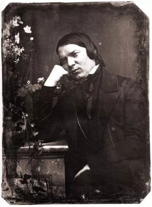 历史上的今天——1819年9月13日,德国钢琴家克拉拉出生_德国新闻_德国中文网