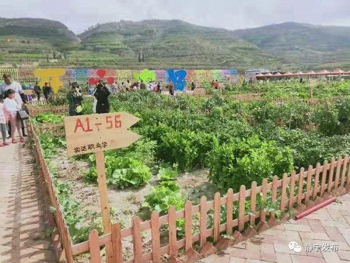 静宁县各乡镇经济总量_甘肃省静宁县地图