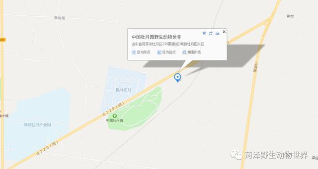 菏泽市牡丹区人口_菏泽各区县大小及人口排名