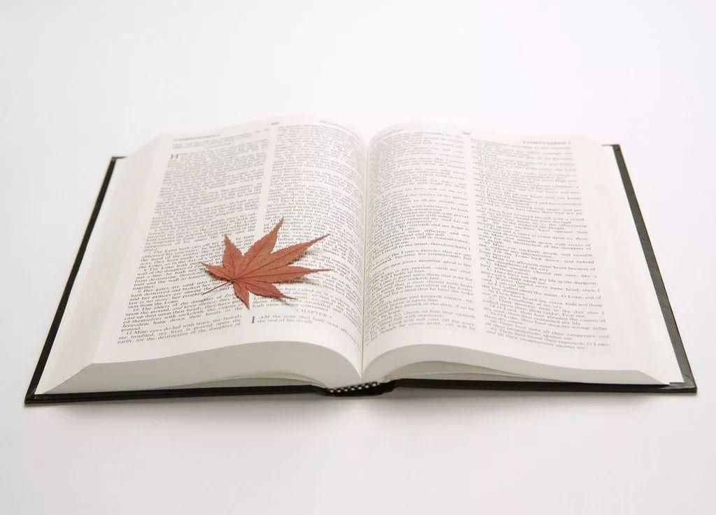 最珍贵的作文_写一篇600的作文 最珍贵的遗产