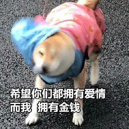 十条笑话:一边充电一边玩手机,有人说像狗被拴着一样