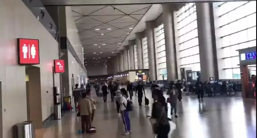 100秒!女大学生机场救下一条命!_陈婧琦