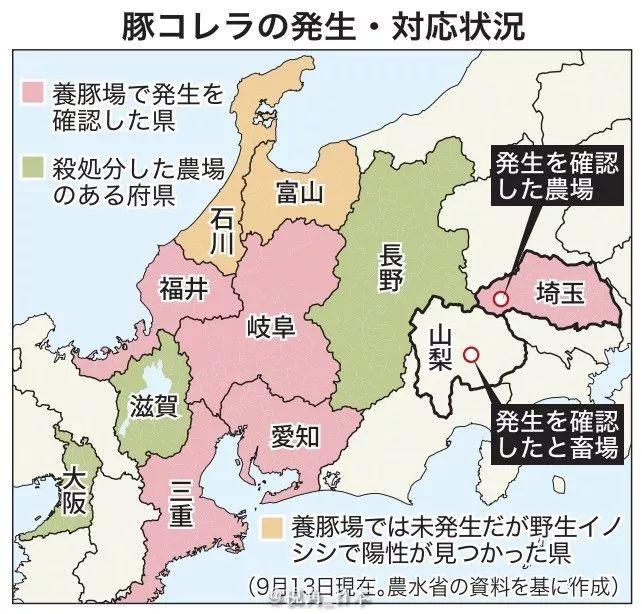 猪瘟疫情最新消息 日本猪瘟疫情扩散到8府县